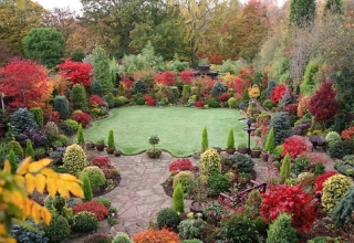 diy-home-decor-get-your-garden-ready-for-fall-1